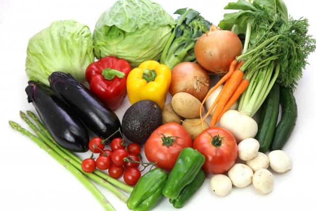 野菜 一般社団法人七草会 就労継続支援B型あらた 熊本県人吉市