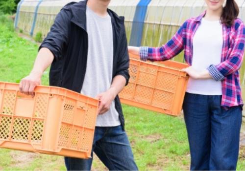 農作業|一般社団法人七草会 就労継続支援B型あらた 熊本県人吉市